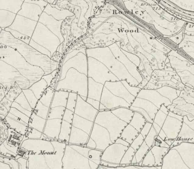 The Mount, Stead and The Mount Lodge shown on the OS 1851 Map